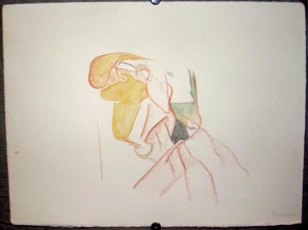sanguine grasse et aquarelle s/ Fabriano. 28,5 x 38,5 cm. 26. 10. 2016.